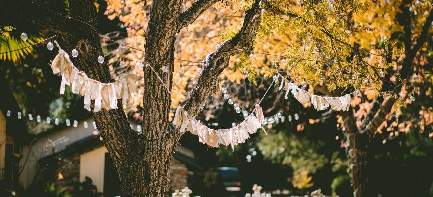 Kır Düğünü Fiyatları ve Öneriler