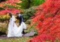 Sonbahar ayında evleneceklere düğün organizasyon tavsiyeleri